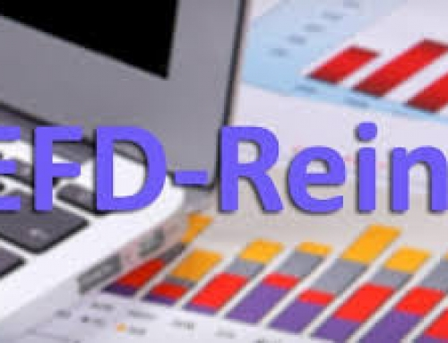 EFD – REINF